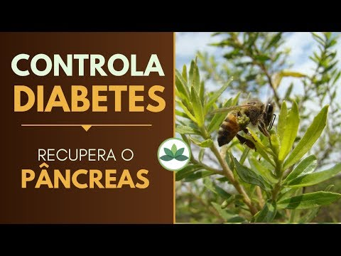 Uma planta para CONTROLAR A DIABETES e recuperar o PÂNCREAS!