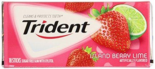 Trident Gum 18 Stick Pack