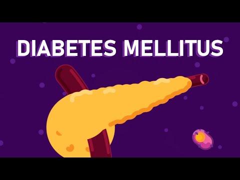What is Diabetes Mellitus? – Understanding Diabetes – Diabetes Type 1 and Type 2